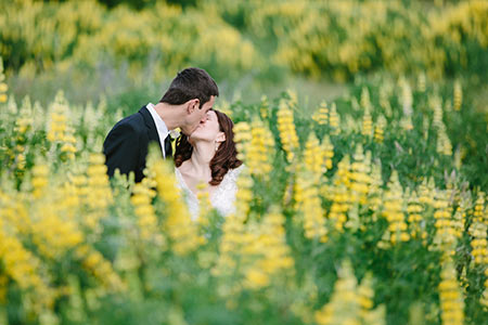 Lupin Weddings, Spring Wedding Wanaka